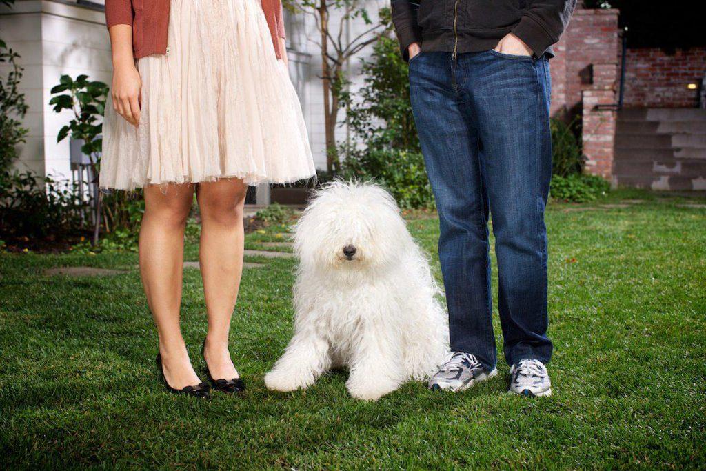 Mark Zuckerberg's Hungarian Puli, Beast | New Doggy